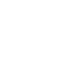 Duncan House Sober Living Logo